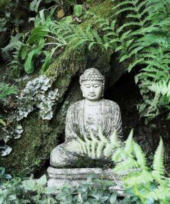 Buddhismus und die Gemeinschaft des stillen Wassers